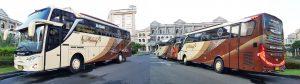 sewa bus pariwisata terbaru murah berkualitas di jakarta bekasi depok tangerang